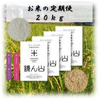 お米の定期便 20kg(5kg×4袋)