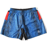 Cierpinski Buggy Shorts(Blue) E2103920