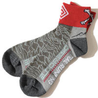 Pleasures Sox(Gray)
