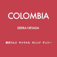 [NUTTY] コロンビア Sierra Nevada  深煎り