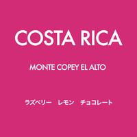 [FRUITY]  コスタリカ Monte Copey El Alto