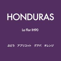 [Juicy]  ホンジュラス La Flor IH90