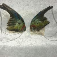 セイキインコの翼の髪飾りセット