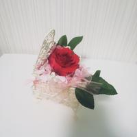 〖ラジカルフラワー〗赤バラのピアノアレンジ