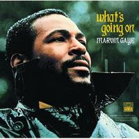 マーヴィン・ゲイ Marvin Gaye – What's Going On アナログLPレコード輸入盤