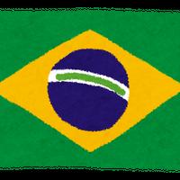 【送料一律400gまでのご注文】ブラジル・レッドアイ  浅煎り 200g