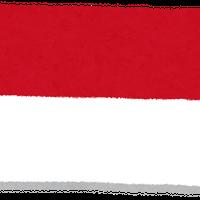 【200g+200g=400gのご注文のみ送料半額185円】 トラジャママサ インドネシア  中深煎り 200g