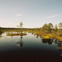 """Mizuki Kin  """"landscape studies #Tallinn"""""""