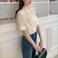sheer ribbon blouse