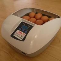 全自動孵卵器 全自動 孵卵器 ふ卵器 孵卵機 PSE認証品