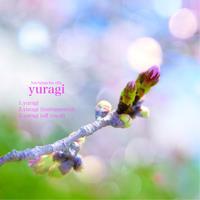 はちみちゅえりーネット販売限定CD「yuragi」