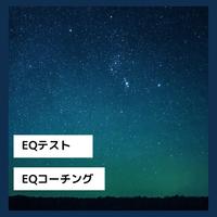 EQテスト+デブリーフィング(30分)