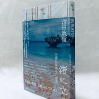 清田政信『渚に立つ 沖縄・私領域からの衝迫』