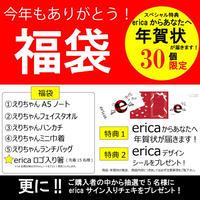 【30個限定!erica「今年もありがとう!福袋」】年賀状特典付き!