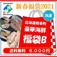 新春福袋2021【冷凍】【B】