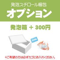 【オプション】発泡スチロール梱包+300円