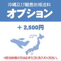 【オプション】送料+2500円