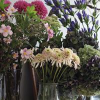 季節のお花「おまかせミニブーケ」5,500円配送料込
