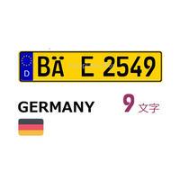 ドイツナンバー黄(無反射)