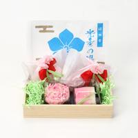 【タクシーde和菓子便】母の日セット
