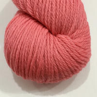 cascade 220            SHRIMP 7804