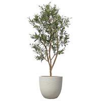 【EZ BARRIER GREEN 365】抗菌人工樹木 ハンドメイド オリーブ H210㎝(陶器鉢付)