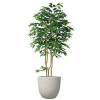 【EZ BARRIER GREEN 365】抗菌人工樹木 ハンドメイド フィカス H210㎝(陶器鉢付)