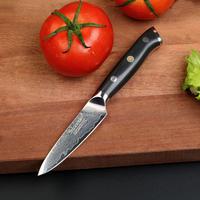 Sunnecko プロフェッショナル  3.5 インチ 果物ナイフ カミソリシャープブレード ダマスカス鋼 野菜カット