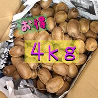 【お得】キウイ「ヘイワード」中玉4kg★自然農法・オーガニックフルーツ 10月下旬より【季節限定】