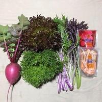 ピクルス2個とサラダ向け野菜(S)のセット