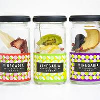 自分で作るフルーツビネガー VINEGARIA(ビネガリア)  3本BOXセット