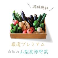 【厳選山梨野菜】(野菜9品以上の詰め合わせ/愛情♡やまなし農産物パック)
