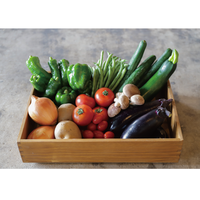 【期間限定】毎週 or 隔週お届け!選りすぐり野菜BOX便(〜10月末まで/愛情♡やまなし農産物パック)
