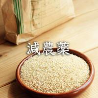 【減農薬】飛騨産コシヒカリ(玄米)【5kg】