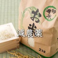 <定期便>【減農薬】2019年飛騨産コシヒカリ(白米)【5kg】