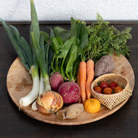 【スタッフお届け便】一汁一菜のお野菜セット 1人〜2人用