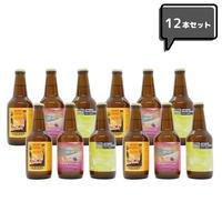 【EC限定】Fruit Ale アソート12本セット #1