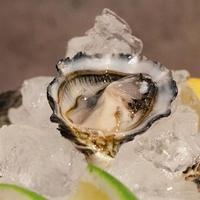 今が旬な産地の牡蠣を産地直送でお届け♪2キロ(約20個)