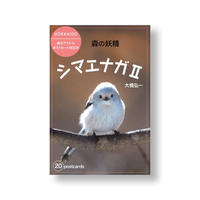 ポストカードBOOK 森の妖精 シマエナガⅡ