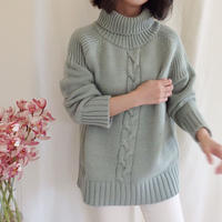 twist turtle knit