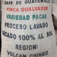 グアテマラ グアルバドール農園 200g