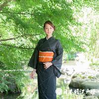 0176 夏物 小紋 Aランク美品 薄物 絽 化繊 身丈153cm