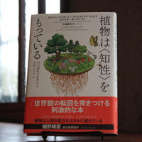 【今週のおすすめ本①】『植物は〈知性〉をもっている』ステファノ・マンクーゾ、アレッサンドラ・ヴィオラ、他  著