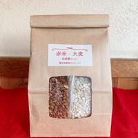 赤米・大麦 自然農セット