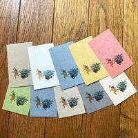 カード 10枚同柄セット 「クマ」