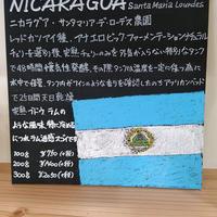 ニカラグア レッドカツアイ種 アナエロビックナチュラル100g