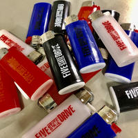 """FSD logo"" Lighter"