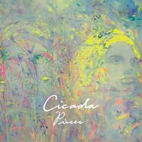 Cicada - Pieces (LP)