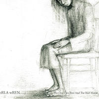 Orla Wren - The One Two Bird And The Half Horse (CD)