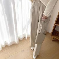 check slacks pants [BT20SS403]